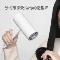 小米生态链Reepro迷你负离子润发吹风机(白色)