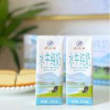 源百希3.8%高蛋白牛奶 原生高钙水牛纯奶200g*20